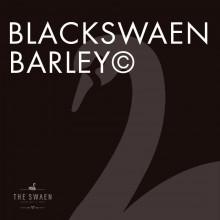BlackSwaen Barley
