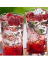 Kit Hard Seltzer Frutas del Bosque